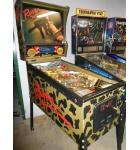 RAVEN Pinball Machine Game for sale by GOTTLIEB